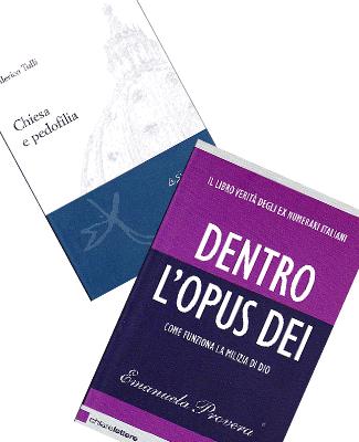 Survivors Voice project proposal Book Translations